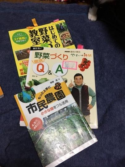 yasaibookzv3.jpg
